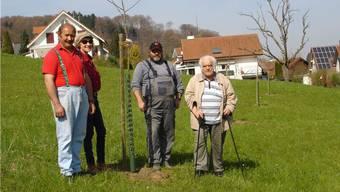 Gusti Freiermuth, Gabi Freiermuth, Bernhard Wolf und Carlo Binder mit den in Zeiningen neu gesetzten Hochstamm-Apfelbäumen.
