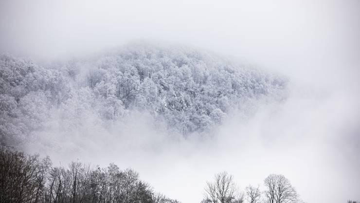 Winterzauber in Staffelegg.
