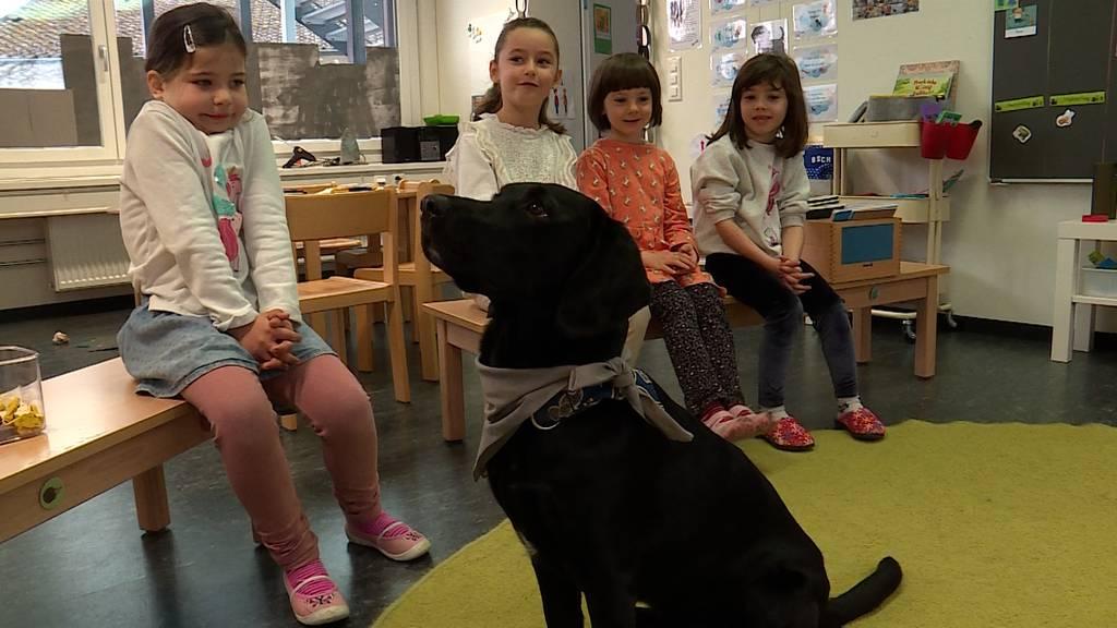 Tierischer Unterricht