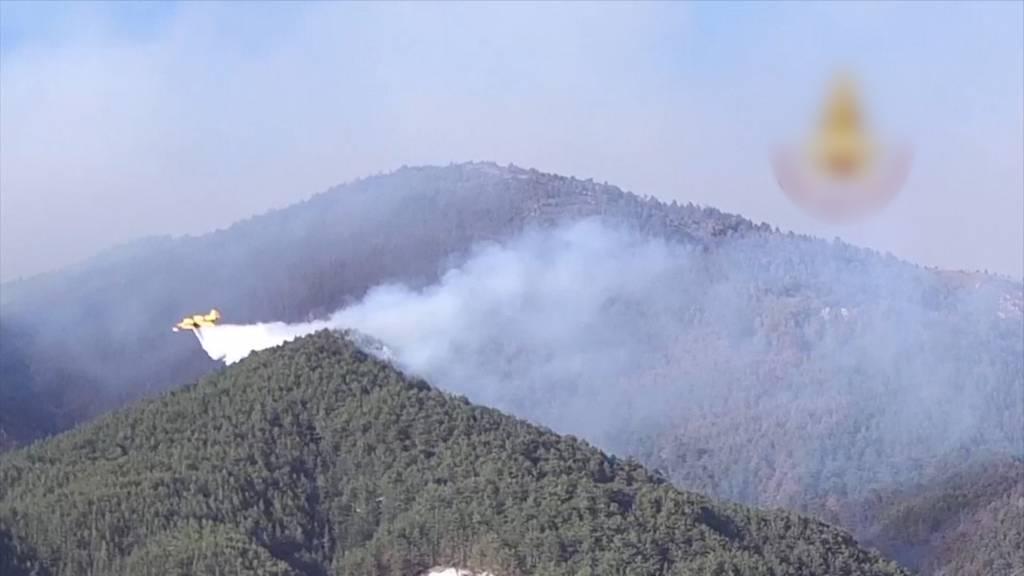 Waldbrände in der Region Abruzzo wüten weiter