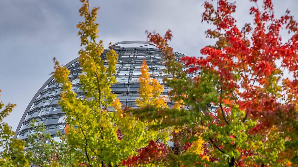 Rot, gelb und grün sind die Ahornblätter an den Bäumen vor dem Deutschen Bundestag gefärbt. Foto: Michael Kappeler/dpa