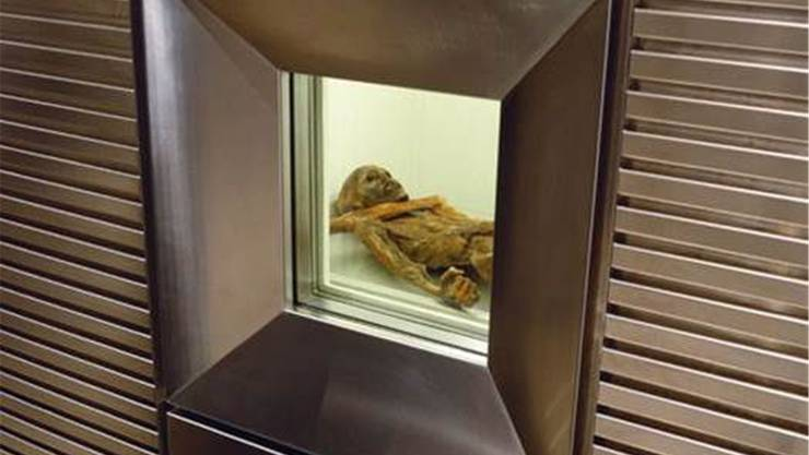 Das Fenster in der Klimakammer gibt den Blick auf Ötzi frei. ho