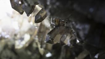 Kristalle, die Visionen energetisieren und verstärken für 149 Euro? Dafür spart man beim LSD, findet Willi Näf.