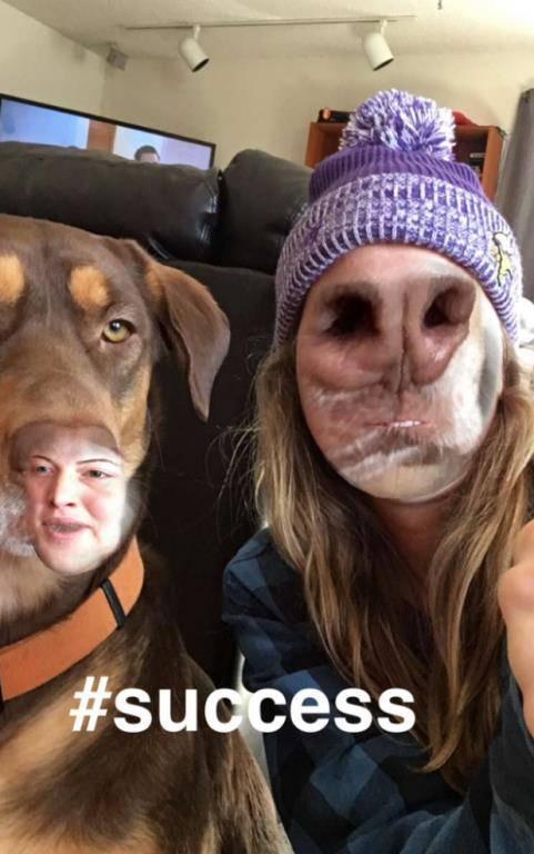 Face Swap mit Tieren