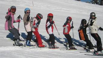 Werden die zusätzlichen Mittel gesprochen, soll an der Basler sekundarschule die durchführung eines Skilagers obligatorisch bleiben.