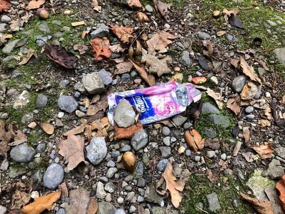 Trotz der Abfallsäcke liegt immer wieder Müll am Boden.