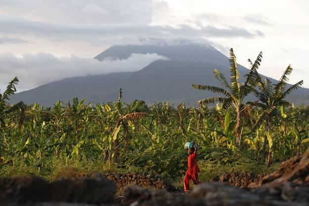 ...könnte schon bald die nahegelegenen Felder und die Stadt Goma überfluten. Für die rund 500 000 Einwohner der Stadt wäre es nicht das erste Mal, dass sie vor der Lava flüchten müssen...