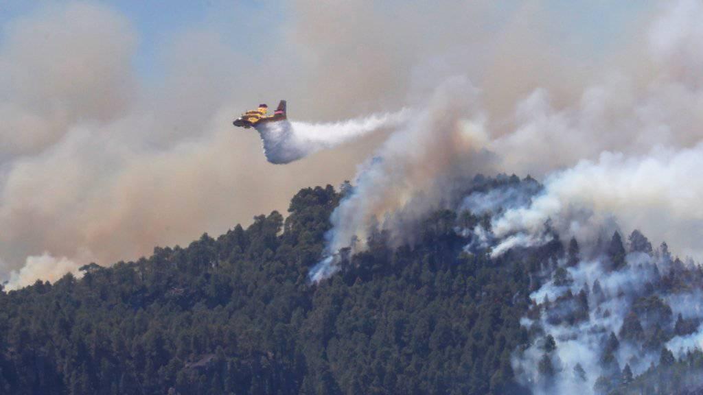 Feuerwehr bekommt Waldbrand auf Gran Canaria unter Kontrolle