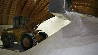 Die Schweizer Salinen müssen ohne Salz aus der Rütihard in Muttenz auskommen. Das Projekt wird für mindestens 20 Jahre sistiert.