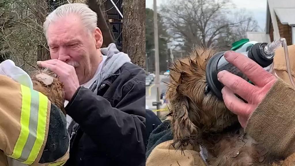 Hund aus Flammen gerettet: So emotional ist das Wiedersehen mit dem Herrchen