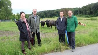 Isabella Braunwalder, Ulysses Witzig (Geschäftsführer Creanatira), Johannes Jenny (Geschäftsführer Pro Natura Aargau) und Markus Käch (Vorstandsmitglied Pro Natura) stehen vor dem sechs Hektar grossen Gelände, das die neugierigen Wasserbüffel und zwei Kühe in Beschlag genommen haben. Andrea Weibel
