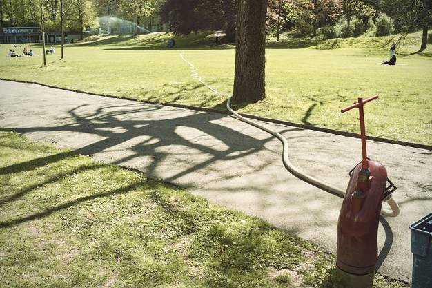 Der Margarethenpark muss bewässert werden