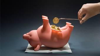 Kampf um Mehreinnahmen: Soll der Sparschwein der Steuerzahler vermehrt geschlachtet werden?