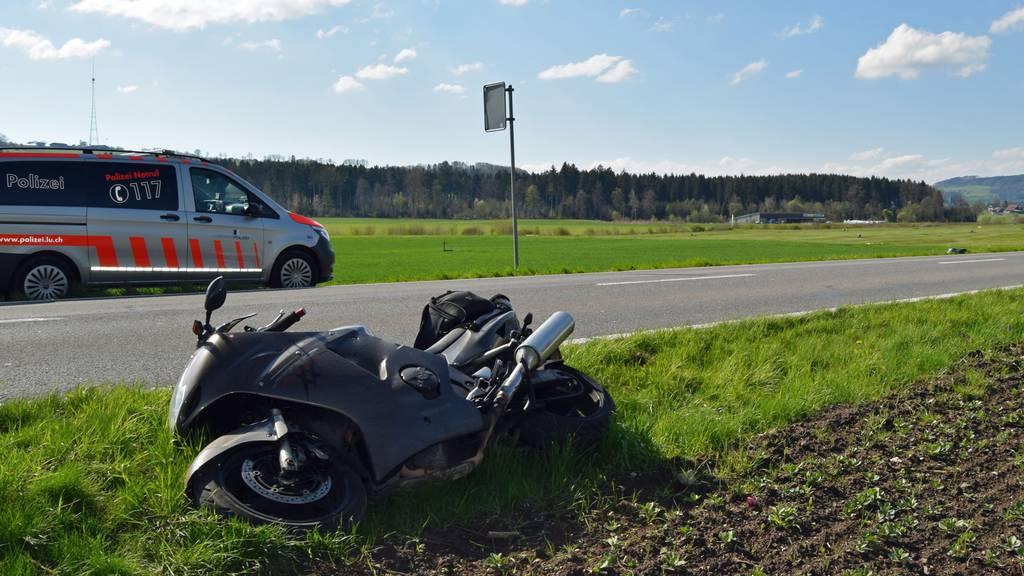 Motorradfahrer fährt in Reh – Polizei warnt vor Wildtieren