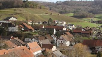 Die Ortsbürgergemeinde Elfingen hat zurzeit 51 Mitglieder und 126 Hektaren Wald.