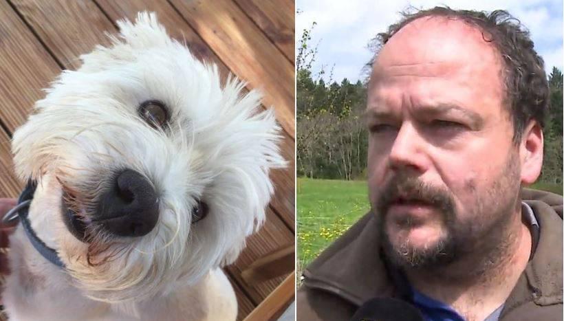 Gemeinde Brittnau warnt vor einem Hundehasser