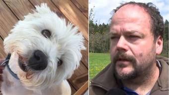In den letzten Tagen verendeten zwei Hunde, nachdem sie vergiftete Köder gefressen hatten.