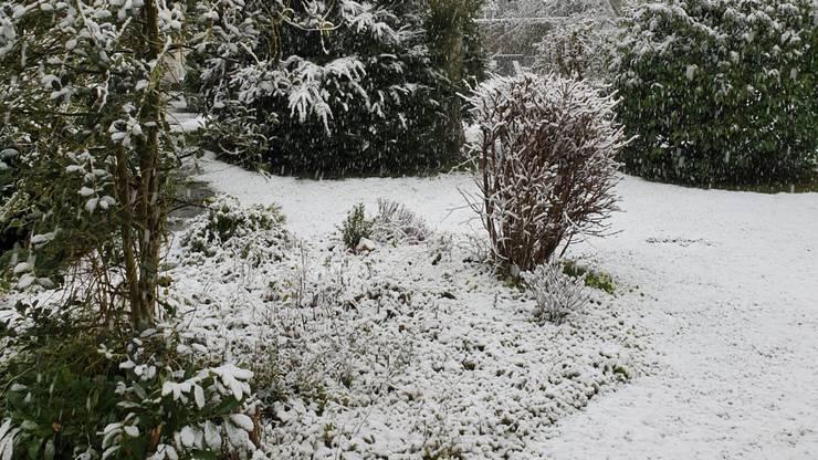 Schnee in Reinach.