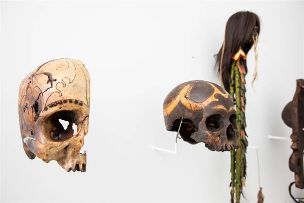 Museum der Kulturen: Wissensdrang trifft Sammelwut