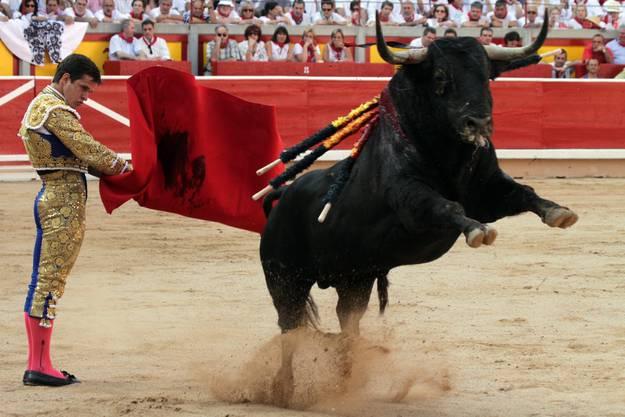Stier spiesst Torero in Pamplona am Hoden auf