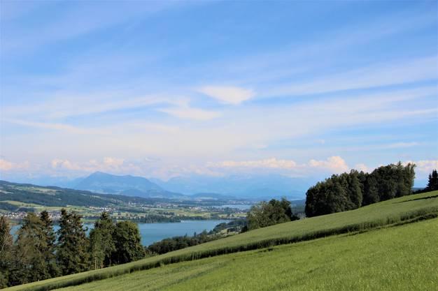 Hallwilersee und darüber Baldeggersee, von Birrwil-Höhe gesehen.