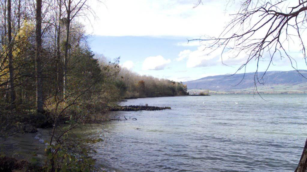 In einem sumpfigen Gebiet am Ufer des Neuenburgersees wurde im Januar 2018 die Leiche der jungen Frau gefunden.