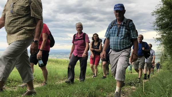 Wandern mit Fernsicht bis zu den Alpen