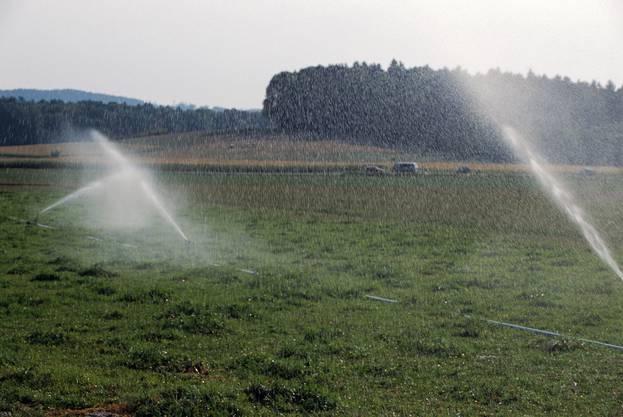 Bauern mussten ihre Felder ständig bewässern