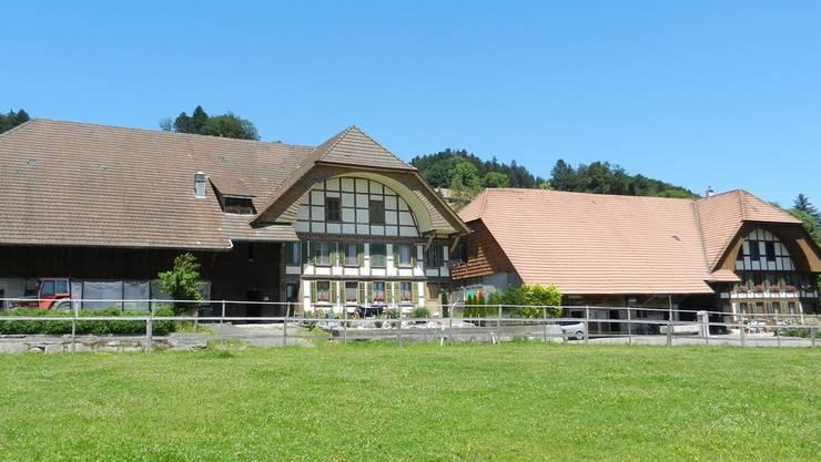 Die beiden Bauernhäuser in Aetingen sollen neu der Kernzone zugeordnet werden.
