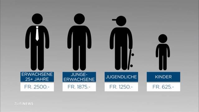 Rheinau testet Grundeinkommen von 2500 Franken im Jahr