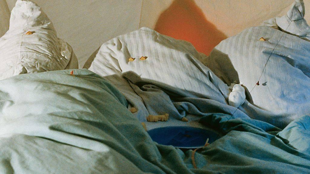 Das Werk «In den Bergen» (1979) von Fischli/Weiss ist Teil der Ausstellung «Die neue Fotografie. Umbruch und Aufbruch 1970-1990» im Kunsthaus Zürich. Die Schau dauert vom 15. November 2019 bis 9. Februar 2020.