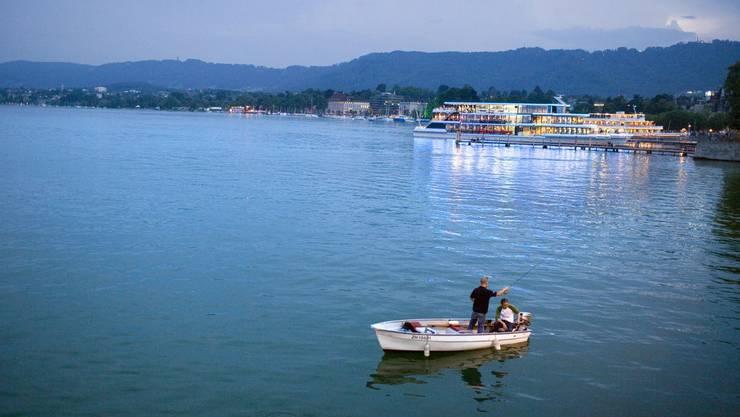 Der Zürichsee