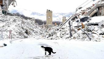 Über den vom Erdbeben zerstörten Ort Amatrice legte sich am Donnerstag eine Schneedecke.