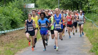 Die gut 500 Läufer mit dem späteren Sieger Fabian Kuert (vorne rechts) machen sich in Derendingen auf den Weg.