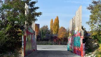 Mit der Idylle auf der Industriebrache Hardturm ist es bald vorbei: Die Zürcherinnen und Zürcher wollen Hochhäuser und ein Fussballstadion.