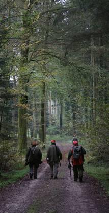 Die Jäger im herbstlichen Wald auf dem Weg in ihre Stände.