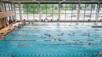 Dass das Tägi für den Schwimmunterricht den Normalpreis verrechne, stimme nur bedingt, sagt CEO Marco Baumann.