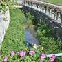 Wird durch das Bauprojekt Abwasserlagerung entlastet: Der Rickenbach.