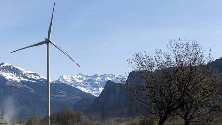 """Die Grüne Partei wollte mit der Volksinitiative für eine """"Grüne Wirtschaft"""" den Ressourcenverbrauch in der Schweiz senken (Symbolbild)."""