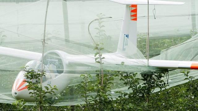 Ein Segelflugzeug landet im waadtländischen Bex in einem Baumgarten