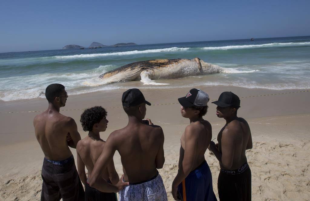 Wal in Rio (© Keystone)