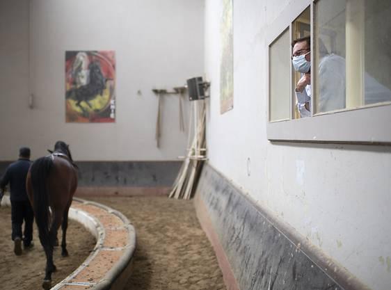 """Fredy Knie gibt mit Schutzmaske Anweisungen beim Training der Pferde beim Circus Knie im """"Wartequartier"""" in Rapperswil SG."""