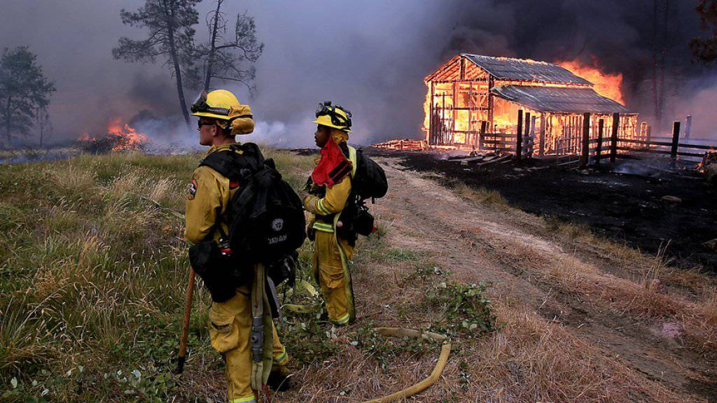 Feuerwehrleute in Kalifornien beim Kampf gegen die Flammen. Laut der kalifornischen Brandschutzbehörde Cal Fire könnte es die bislang teuerste Waldbrandsaison im Westen der USA überhaupt werden