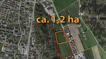 Zuerst soll das nördliche Schild (gelb) im Baugebiet Buech eingezontwerden, das Schild Süd (rot) steht aktuell nicht zur Debatte. ZVG