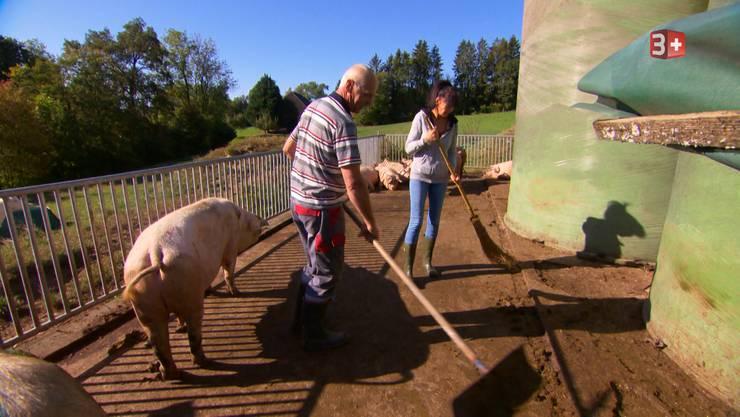 Jolanda packt im Schweinegehege gleich mit an.