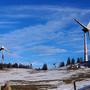 So könnten die Winderäder in der Natur stehen.