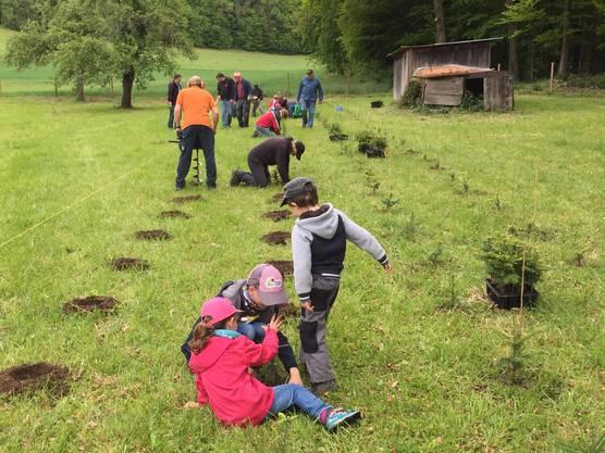 Kinder beim WB pflanzen