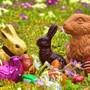 Draussen Ostereier suchen macht Spass – doch wo ist es am schönsten? «Im Steinbruch Mägenwil» meint Leser Markus Meier.
