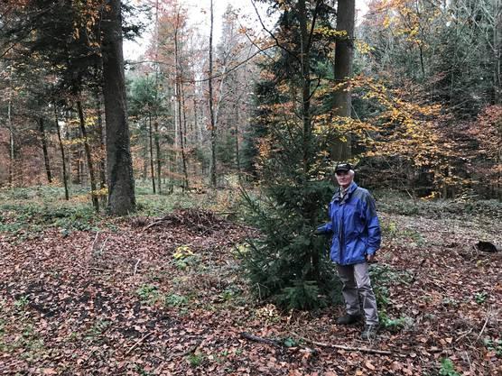 Jakob Bodmer im Tägernauerholz