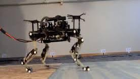 Roboterkatze der ETH Lausanne - ohne Kopf, aber schnell.